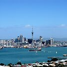 From Mount Victoria by dozzam