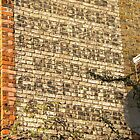 R Ellis, Northwold Road, London by Ghostsigns