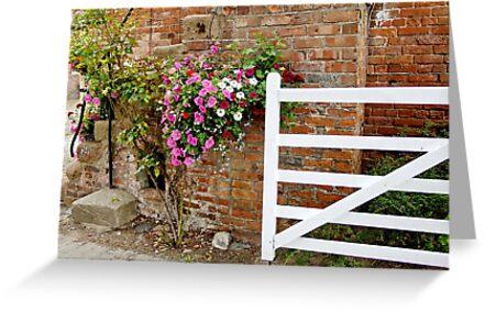Floral Steps by AnnDixon
