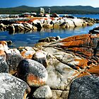 Bay of Fires Tasmania by Imi Koetz