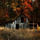 Autumn Barn by Kimcalvert
