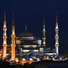 Blue Mosque at Night by Barbara  Brown