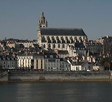 Cathedrale Saint Louis, Blois, France 2012 by muz2142