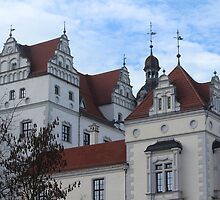Boitzenburg Castle by karina5