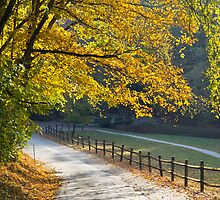 Grist Mill Road by photodug