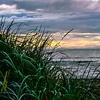 Comox Beach by j Kirk Photography                      Kirk Friederich