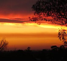 Stunning & Vivid Sunset by Maddy O'Brien