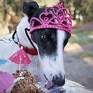 Happy Birthday! by GreyhoundSN