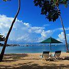 On Vacation by John Dalkin