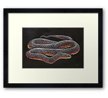 Copperhead live painting Framed Print
