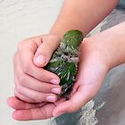 A Bird In the Hand - Baby Lovebird by AuntDot