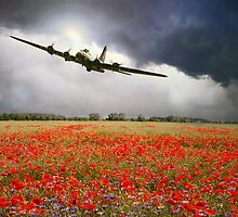 B-17 Poppy Pride by James Biggadike