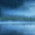 Lake Matheson by Imi Koetz