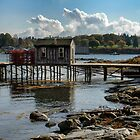 Lobster dock at Bass Harbor Maine by woodnimages