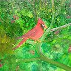 Cardinal by rreily