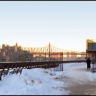 East River in the Winter - NYC, NY by Madeline Bush Ellis