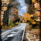 Fall Painted Country Road by Thomas Young
