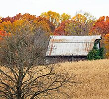 Autumn Barn and Tree in Cornfiled by Kenneth Keifer