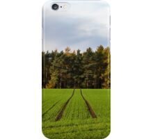 Spring Path to Autumn iPhone Case/Skin