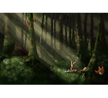 Tomte & Friends Vitsippor Photographic Print