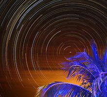 Blue Palm star trails by johnlackphoto