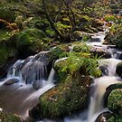 Wyming Brook by James Grant