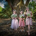 Our Wedding Party - amongst the Macadamias by DavoSp8