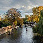 Cambridge by Chris McIlreavy