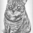 Cat commission by Karen Townsend