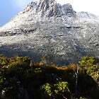 Cradle Mountain by Imi Koetz