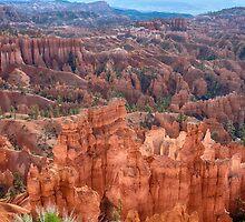Bryce Canyon Utah Views 63 by Bo Insogna