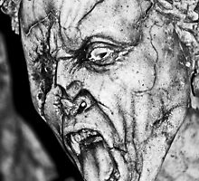 Dont Blink  by Selina Ryles