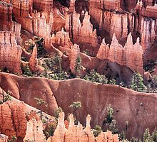 Bryce Canyon Utah Views 505 by Bo Insogna