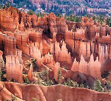 Bryce Canyon Utah Views 508 by Bo Insogna