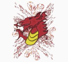 Dragon Fire Wales Kids Clothes