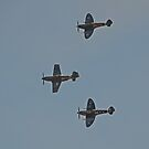Warbirds Downunder 2013, Two Spits One Mustang by bazcelt