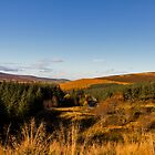 Downhill from the Cabrach by JASPERIMAGE