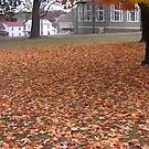 Fall 2013 13 by dge357