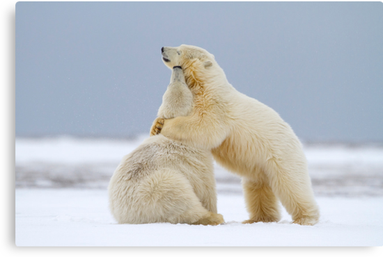 Tender Moments by Martin Smart