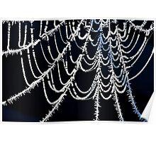 Winter Web Poster