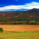 CADES COVE,AUTUMN 2013 by Chuck Wickham