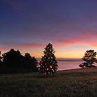 Christmas  by korinneleigh