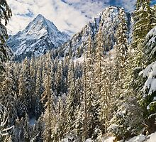 Sperry Peak, Fresh Snow by Randal Ketchem