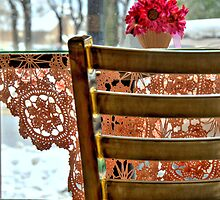 Snow & Lace by Diana Graves Photography