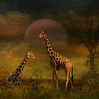 The Giraffe by swaby