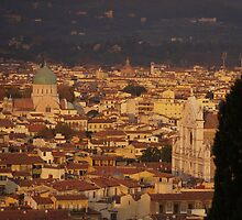 Florence - a view from the hill by Aldo Shaltiel