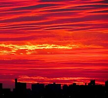 Red Autumn skies in New York City  by Alberto  DeJesus