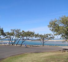 Tidal Flats & wind swept trees, Elliott Heads, Bundaberg Que. by Rita Blom