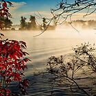 Lake Fog by Jim Haley