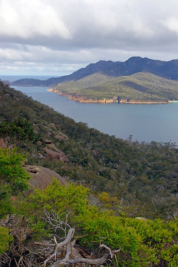 Freycinet by Harry Oldmeadow